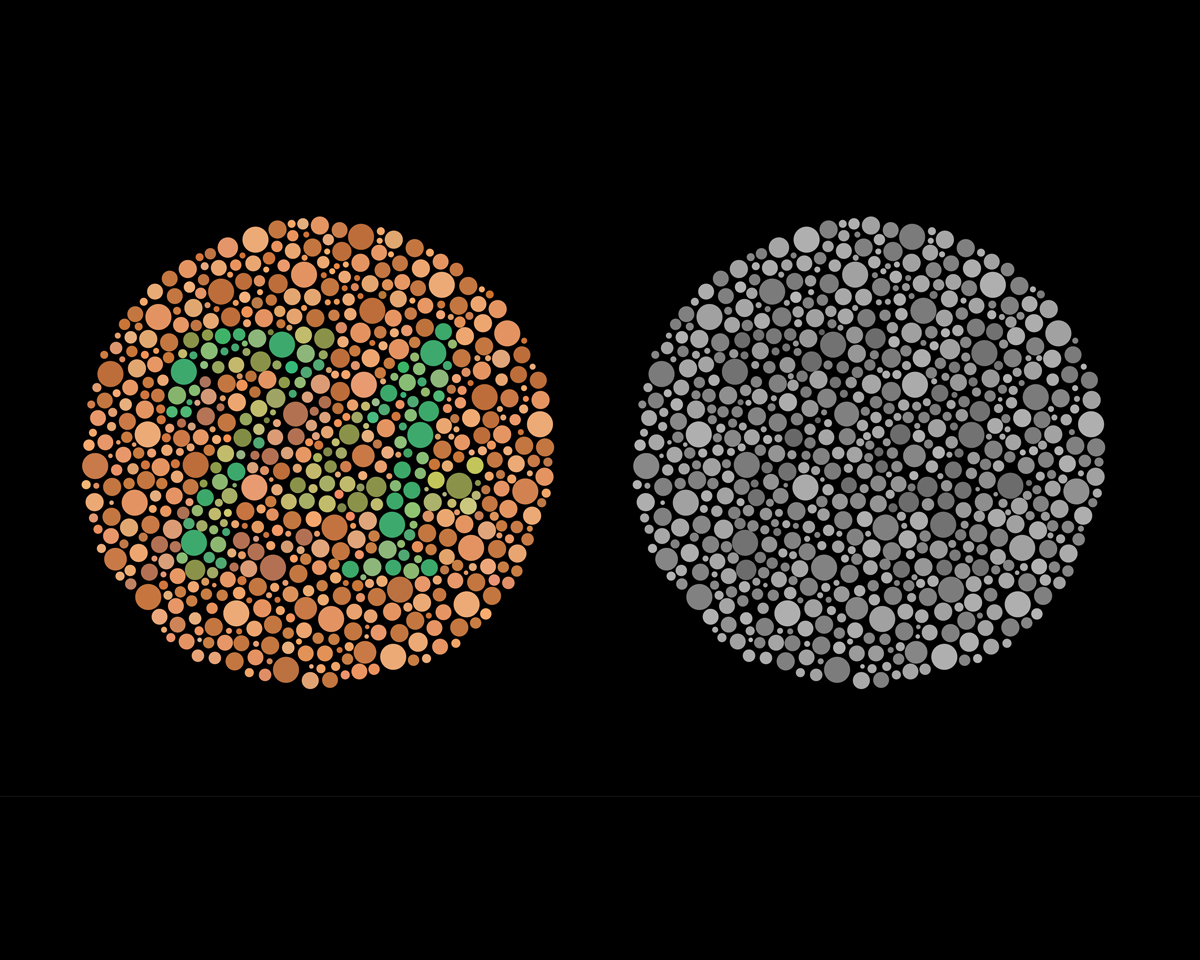 Essays on color blindness